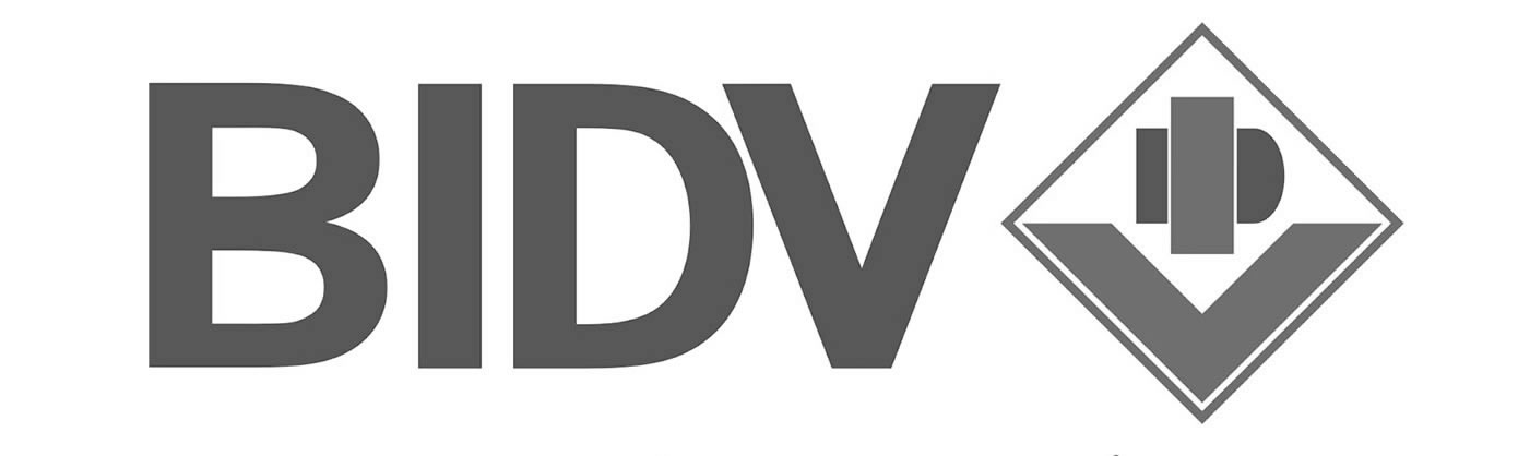 Joint Stock Commercial Bank for Investment and Development of Vietnam (BIDV)
